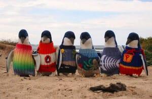penguine sweaters