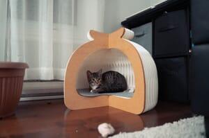 origami cat bed1