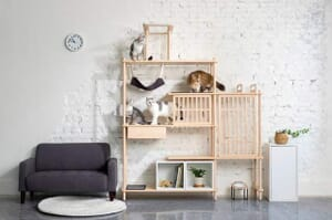 furniture design ideas for cats